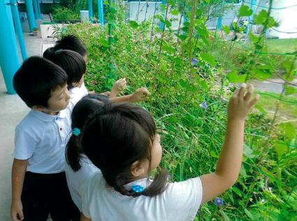 岡部聖母幼稚園(藤枝市)