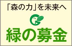 「森の力」を未来へ 緑の募金
