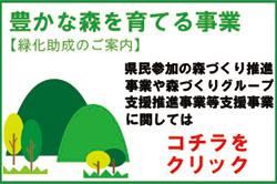 豊かな森を守る事業