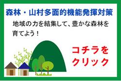 森林・山村多面的機能発揮対策